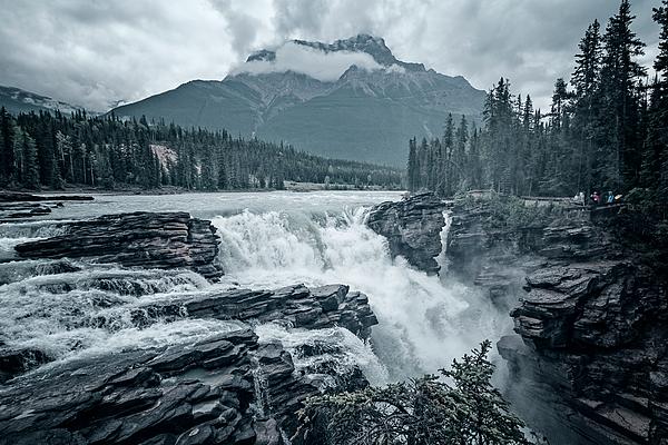 Joan Carroll - Athabasca Falls Desaturated