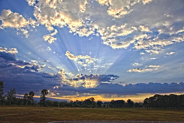 Tiana McVay - August Sunrise