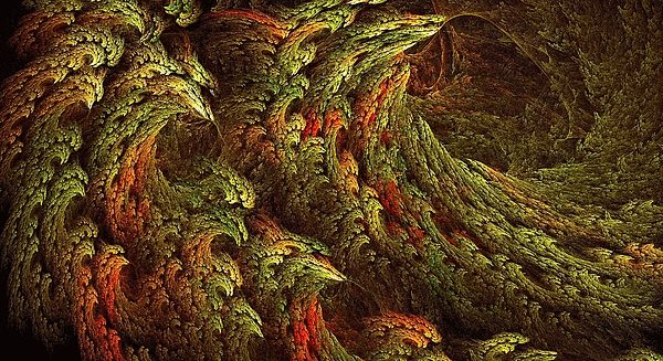 Doug Morgan - Autumn in Fear Forest
