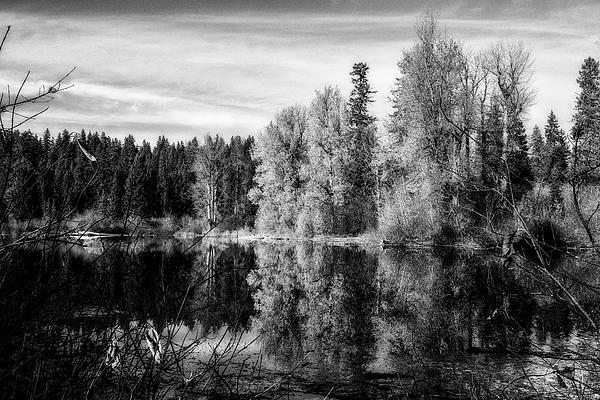 Belinda Greb - Autumn Makes an Appearance at Fish Lake bw