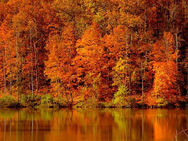 Arlane Crump - Autumn Reflections