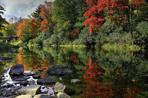 Carol R Montoya - Autumn River Landscape