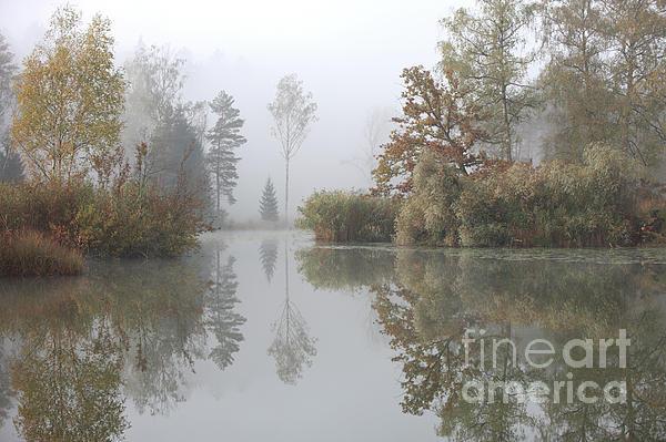 Jana Behr - Autumn Scenery