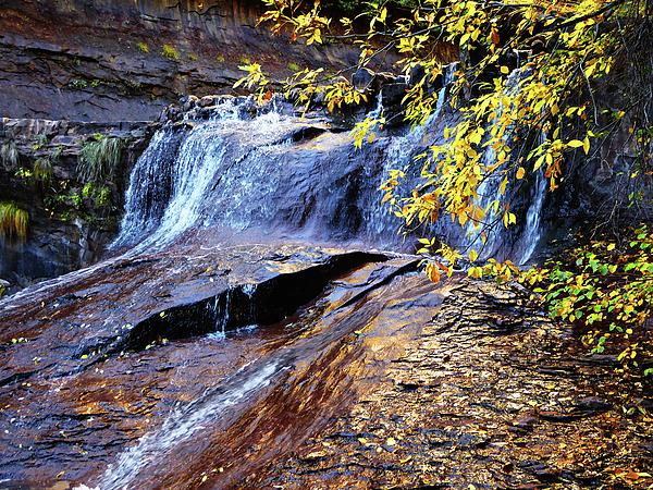 Alan Socolik - Autumn Waterfall with Golden Leaves, Subway