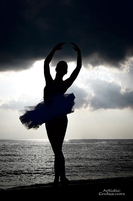Stephen LaFave - Ballerina