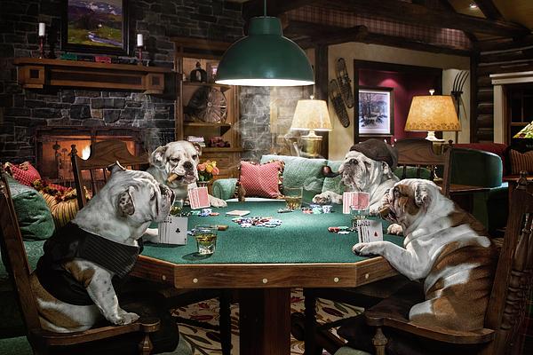 Cheryl Knapp - Bulldogs Playing Poker