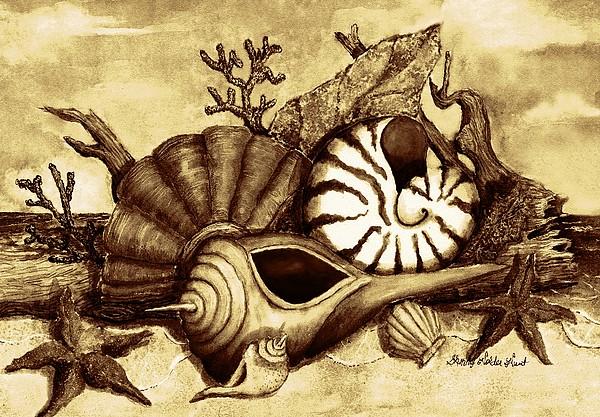 Sherry Holder Hunt - Beach Shells 2