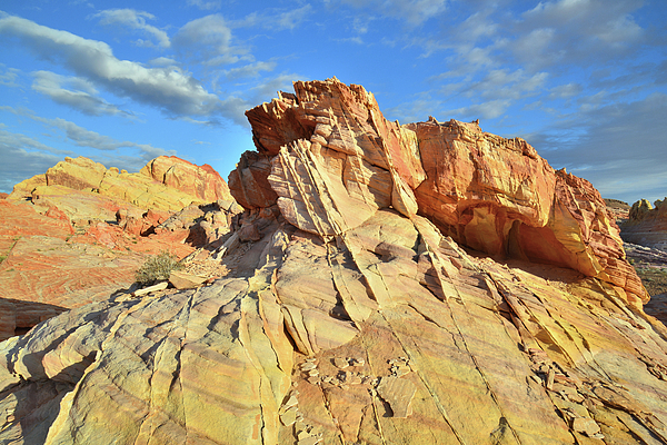 Ray Mathis - Beautiful Sandstone Cropping in Valley of Fire