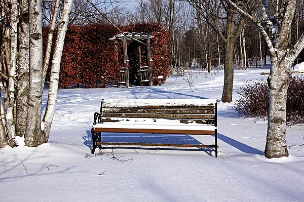 Debbie Oppermann - Bench In Winter