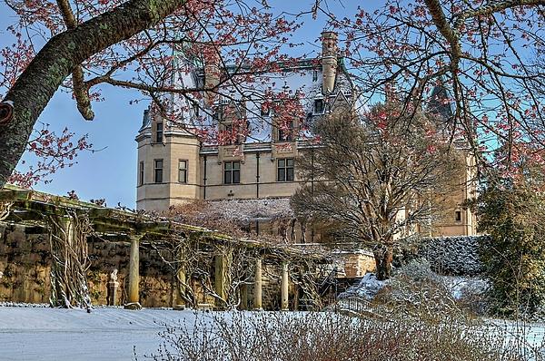 Carol R Montoya - Biltmore House Under a Blooming Tree