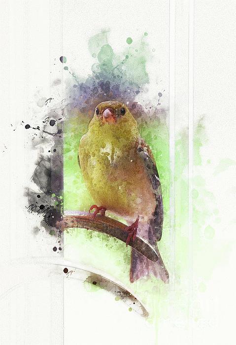 Mary Machare - Bird at the Door