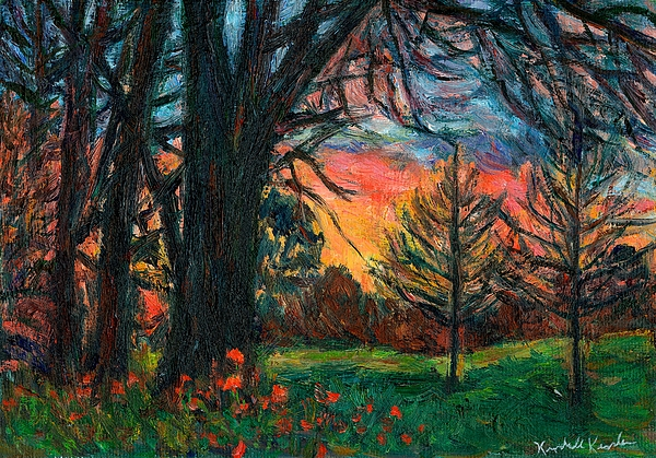 Kendall Kessler - Bisset Park Sunrise