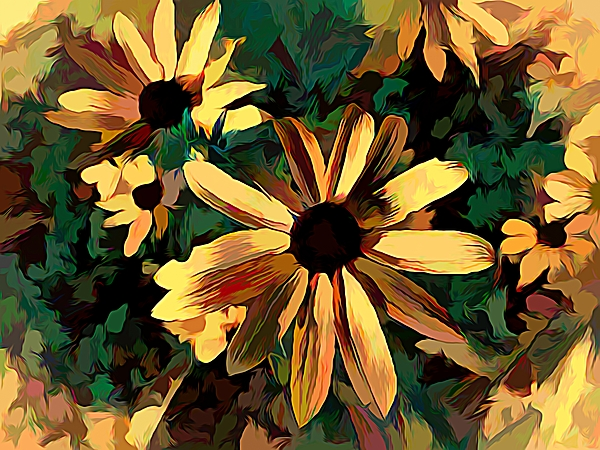 Debra Lynch - Black Eye Susan