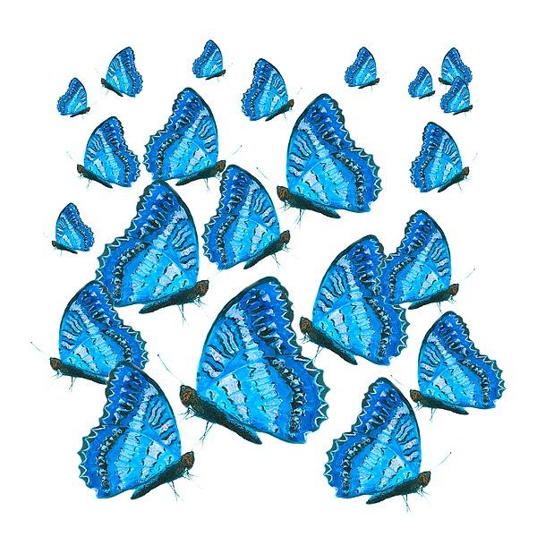 Jan Matson - Blue Butterflies