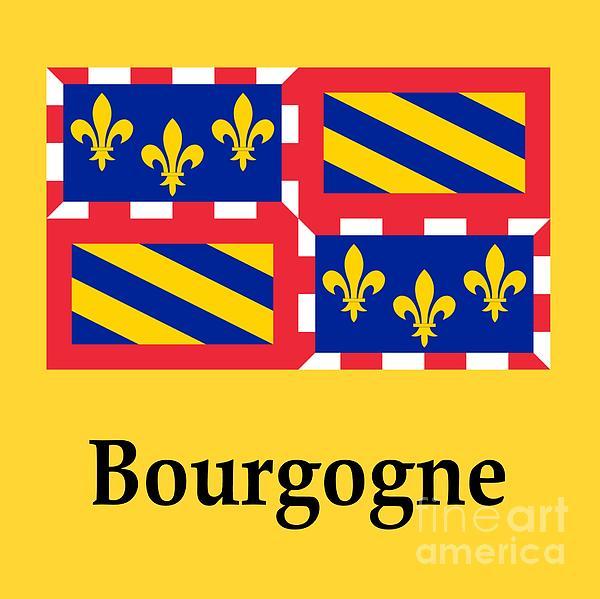 Bourgogne, France Flag And Name Digital Art