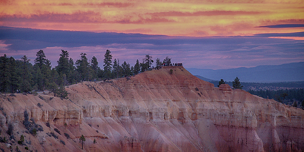 Jim Cook - Bryce Canyon