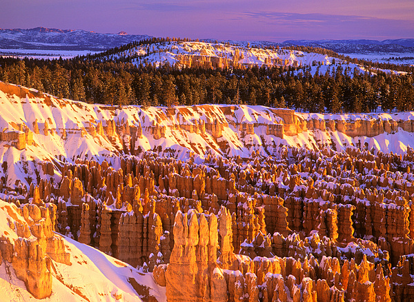 Johan Elzenga - Bryce Canyon winter sunrise