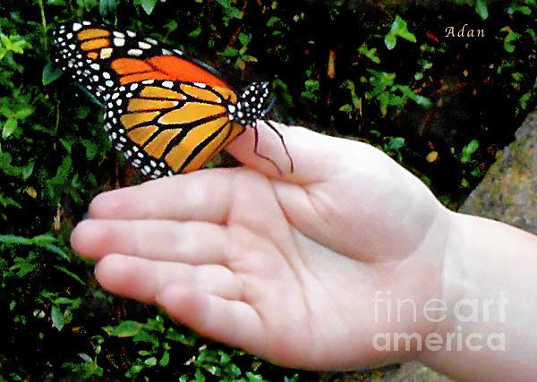 Felipe Adan Lerma - Butterfly in Childs Hand
