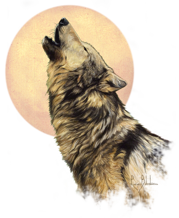 Call Of The Wild T Shirt For Sale By Lucie Bilodeau