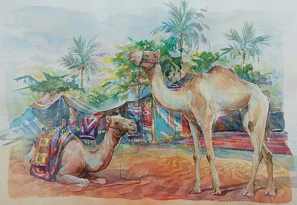 Abdelwahab Nour - Camels in UAE.