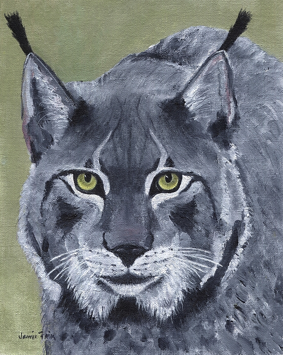 Jamie Frier - Canadian Cat