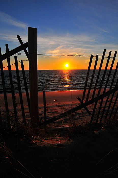 Catherine Reusch Daley - Cape Cod Sunset
