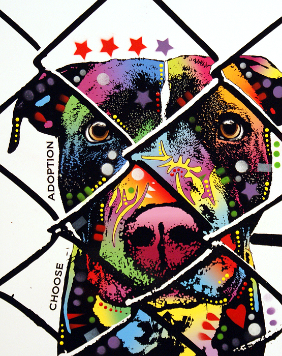 Dean Russo - Choose Adoption Pit Bull