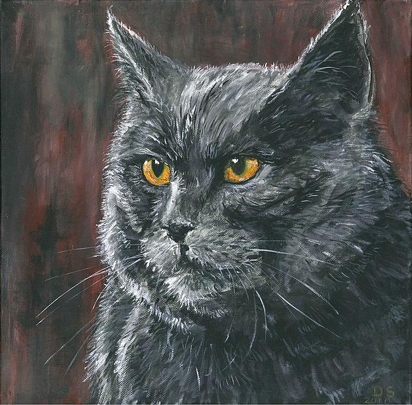 Duncan Sawyer - Christmas cat