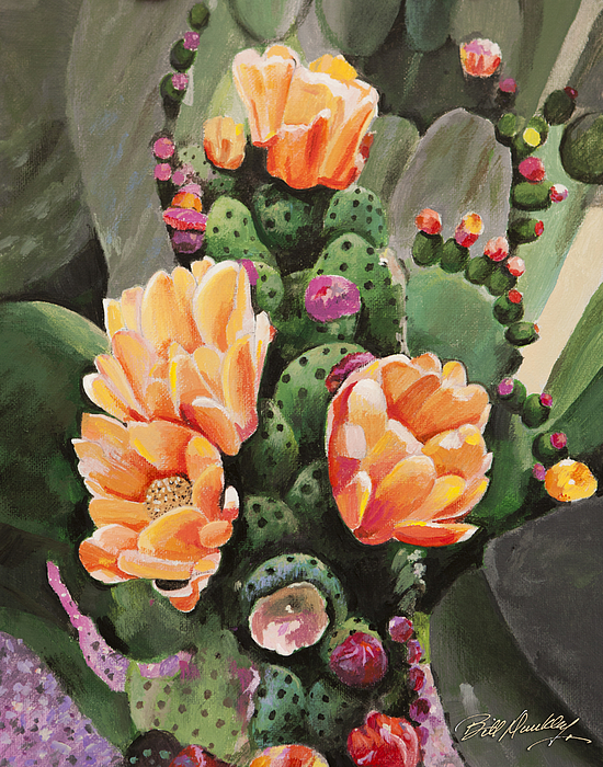Bill Dunkley - Classic Cactus Flowers