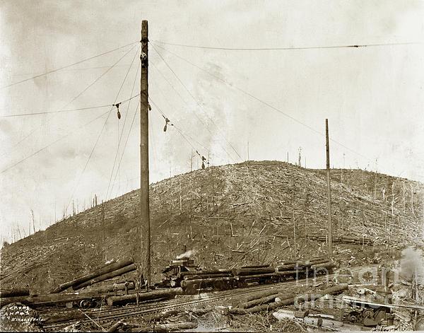 Clemons Logging Camp No 3 No 4 Steam Donkeys Circa 1920 IPhone 6 Case