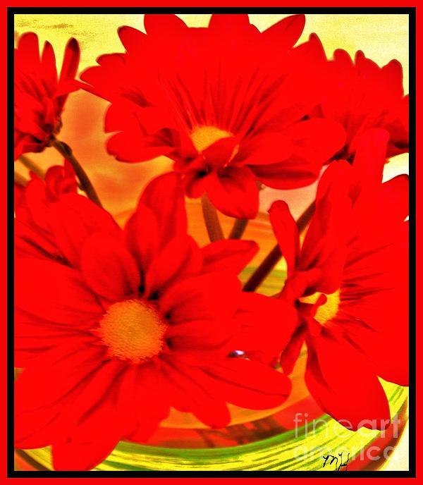 Marsha Heiken - Close Up Red Gerbers