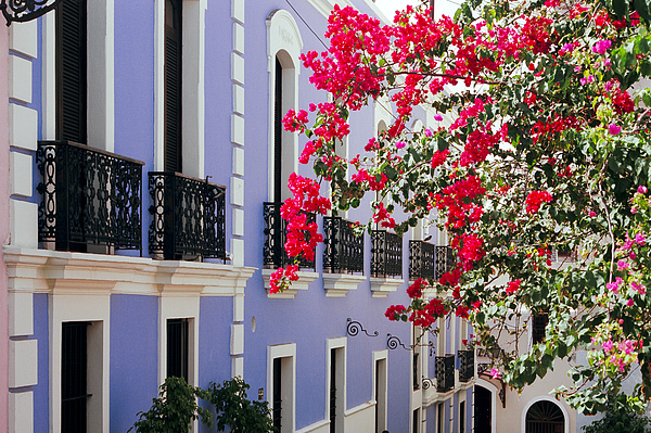 George Oze - Colorful Balconies of Old San Juan Puerto Rico