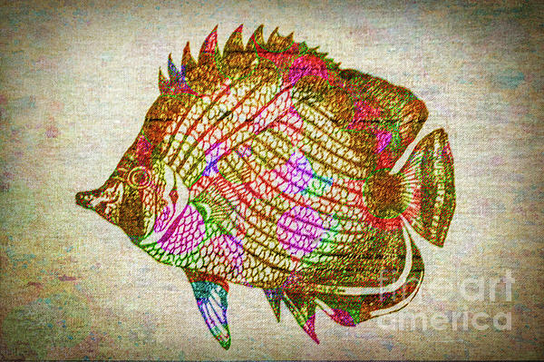 Lynn Sprowl - Colorful Fish