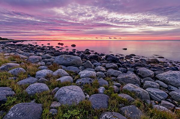 Eilif Johanssen - Colors at dawn