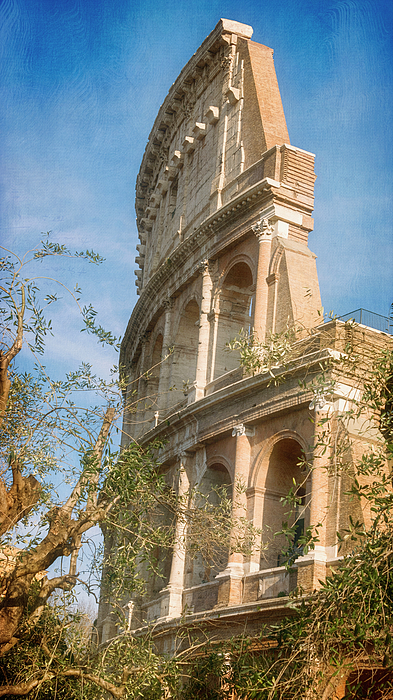 Joan Carroll - Colosseum Afternoon Rome Italy