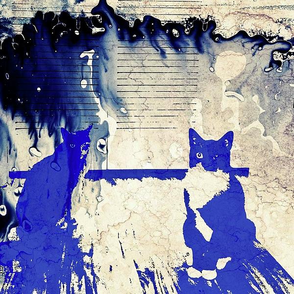 Douglas Parker - Contemplating Cats