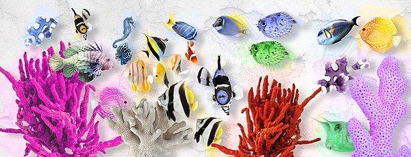 Coral Reef No 01 Digital Art