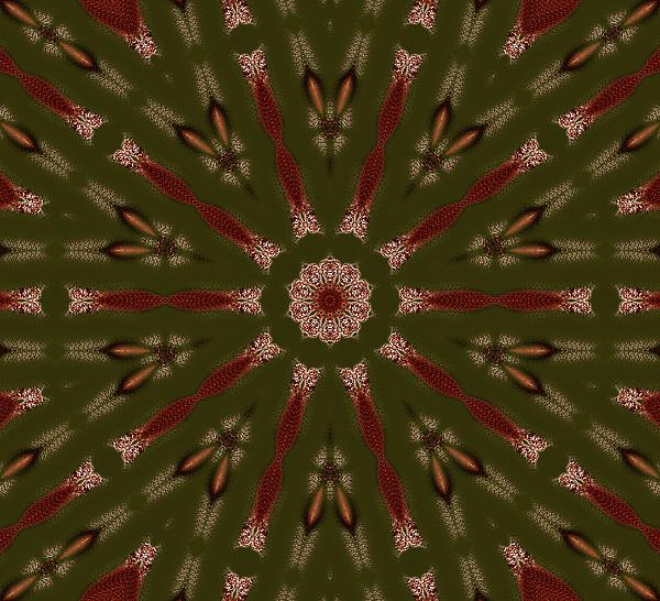 Cosmic Grace Digital Art