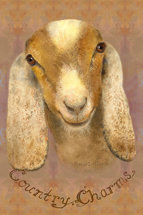 Nancy Lee Moran - Country Charms Nubian Goat with Bright Eyes