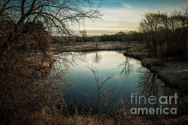 Chellie Bock - Cow Pond Reflection