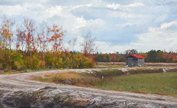 Jim Cook - Cranberry Bog