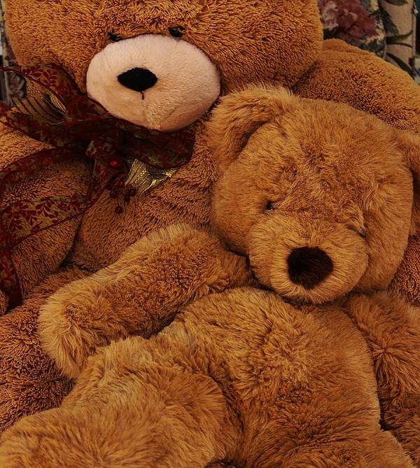 Christopher James - Cuddling Bear