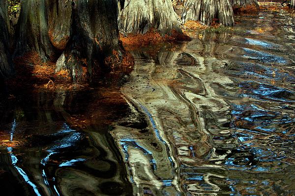 Janet Chung - Cypress Tree Reflection