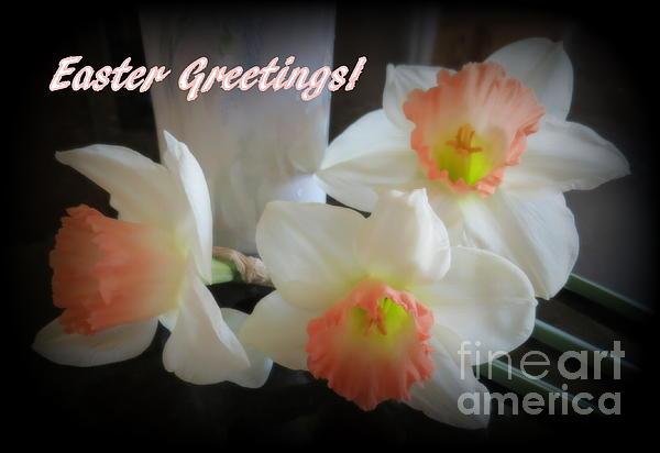 Kay Novy - Daffodil Easter Greetings Card
