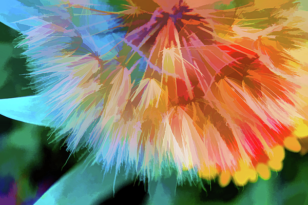 Terry Davis - Dandelion Circus