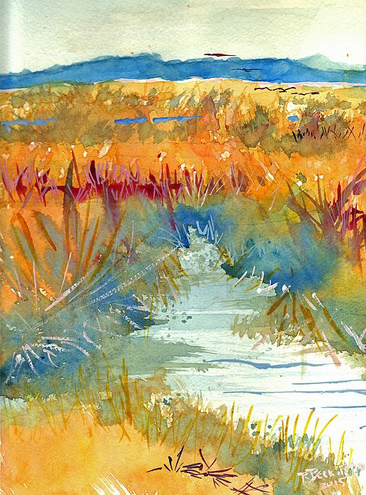 Richard Beckstead - Deal Island Marsh