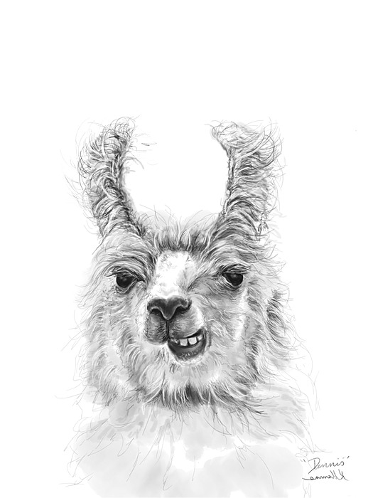 Dennis Drawing