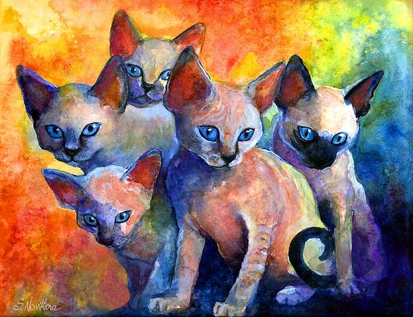 Svetlana Novikova - Devon Rex kitten cats