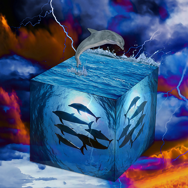 Marvin Blaine - Dolphin Original Art