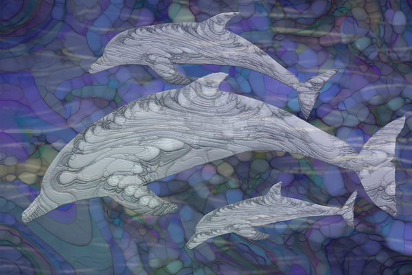 Jack Zulli - Dolphins - Beneath The Waves Series